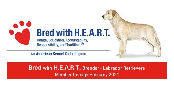 Bred with HEART Breeder Member