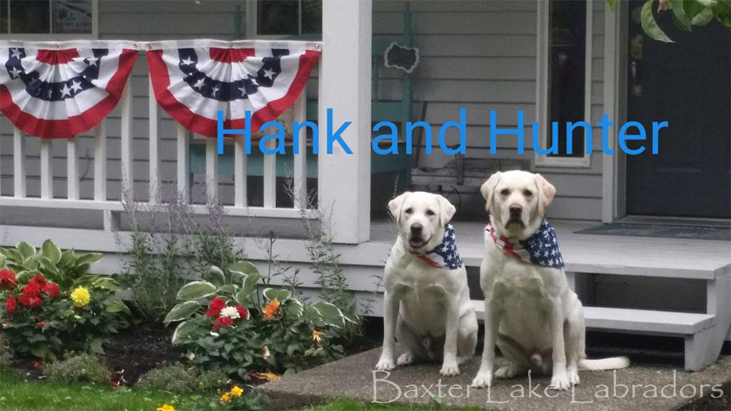 Hunter & Hank