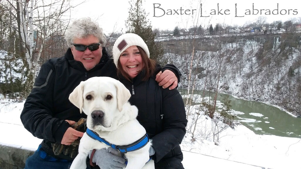 Kurt and his new Labrador Retriever